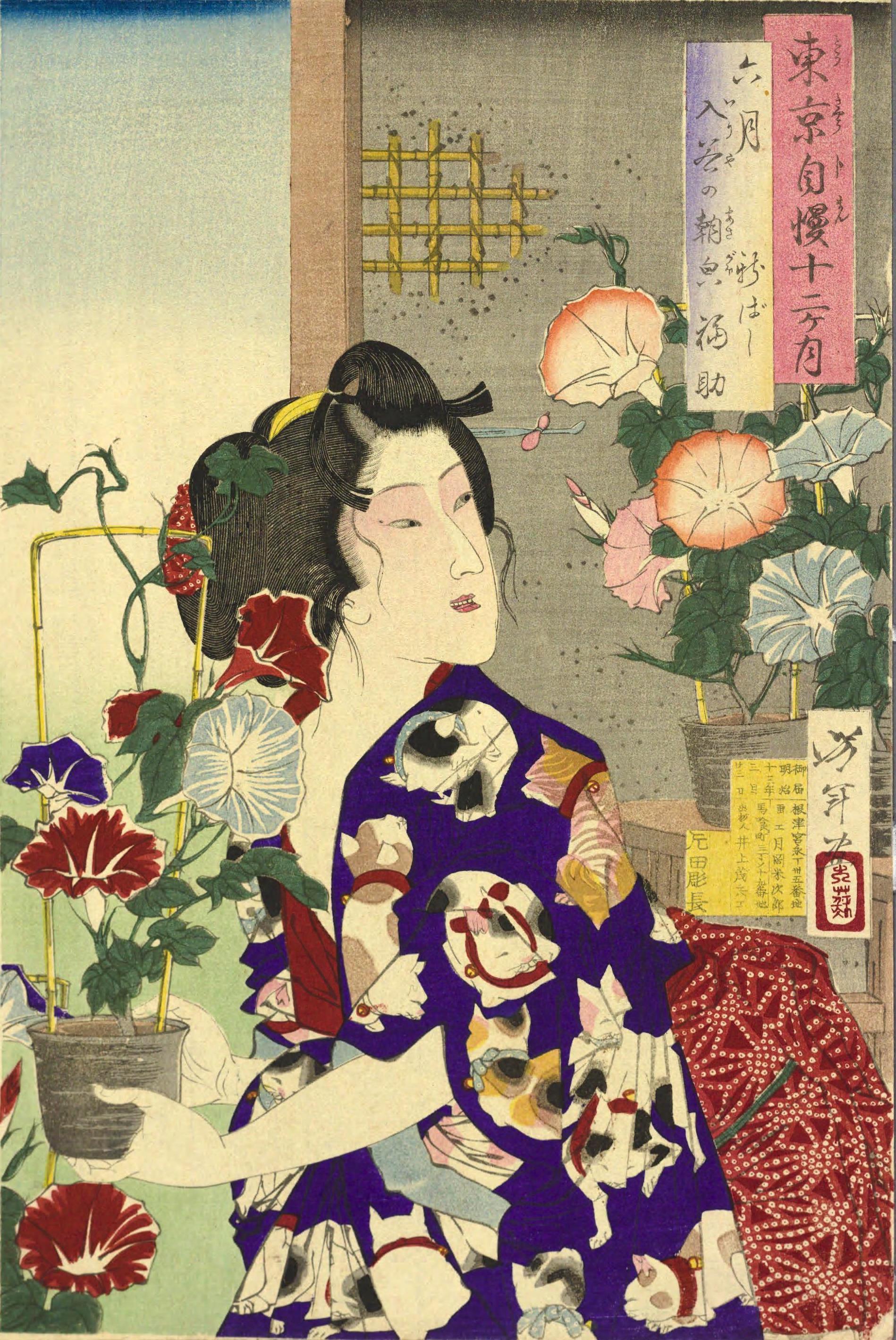 月岡芳年作『東京自慢十二ヶ月』六月 入谷の朝顔