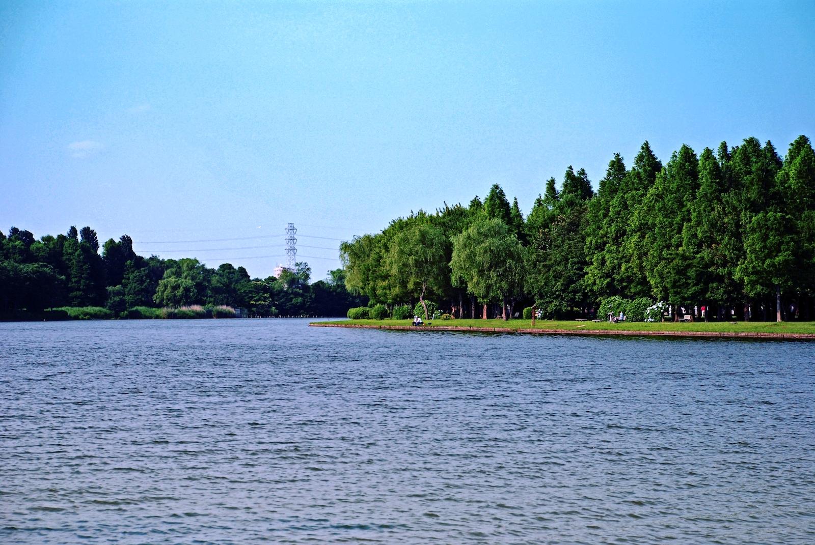 駐 水 車場 公園 元 都立公園、駐車場・遊具広場も閉鎖へ GWの3密対策