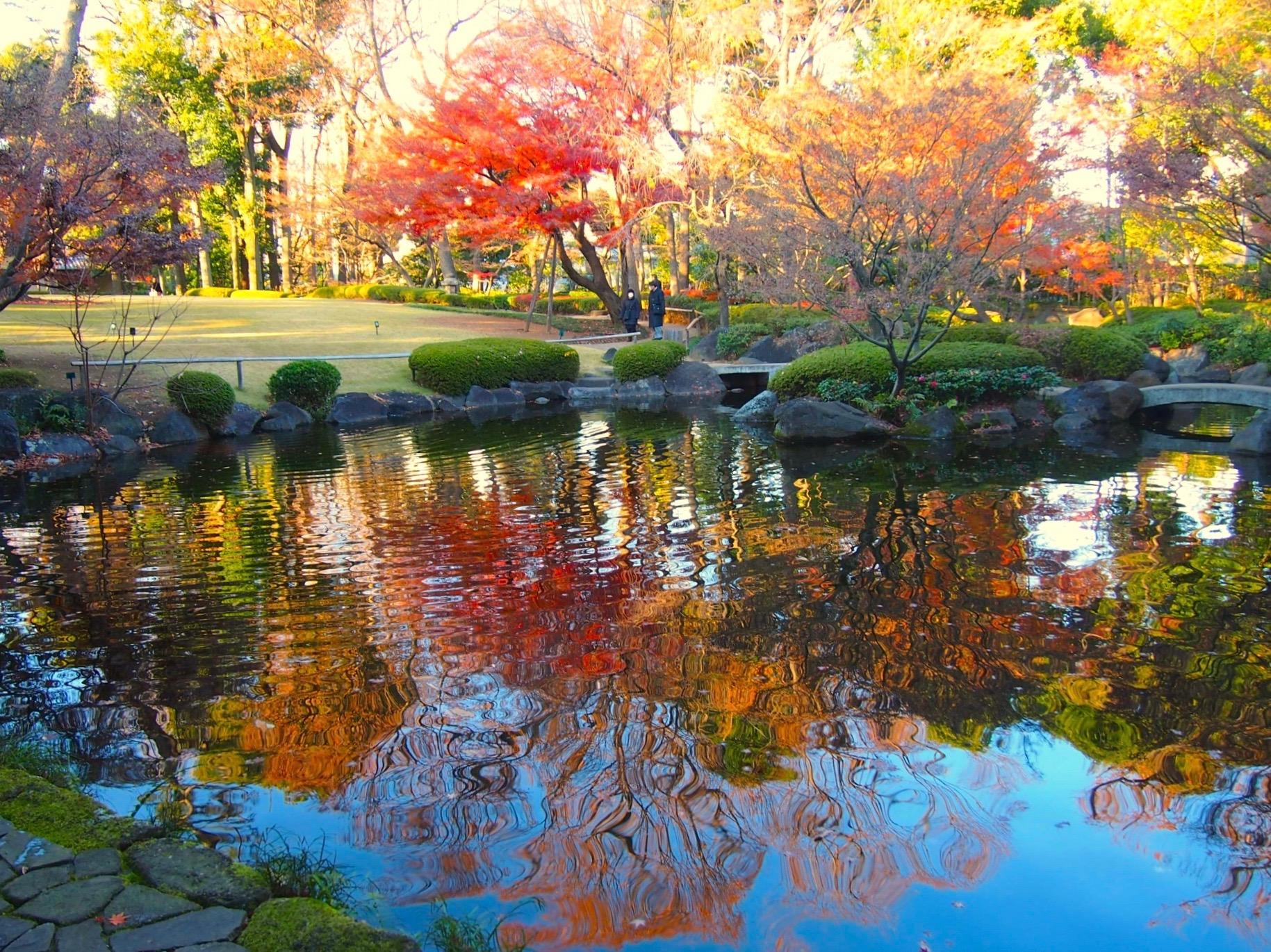 大田黒公園