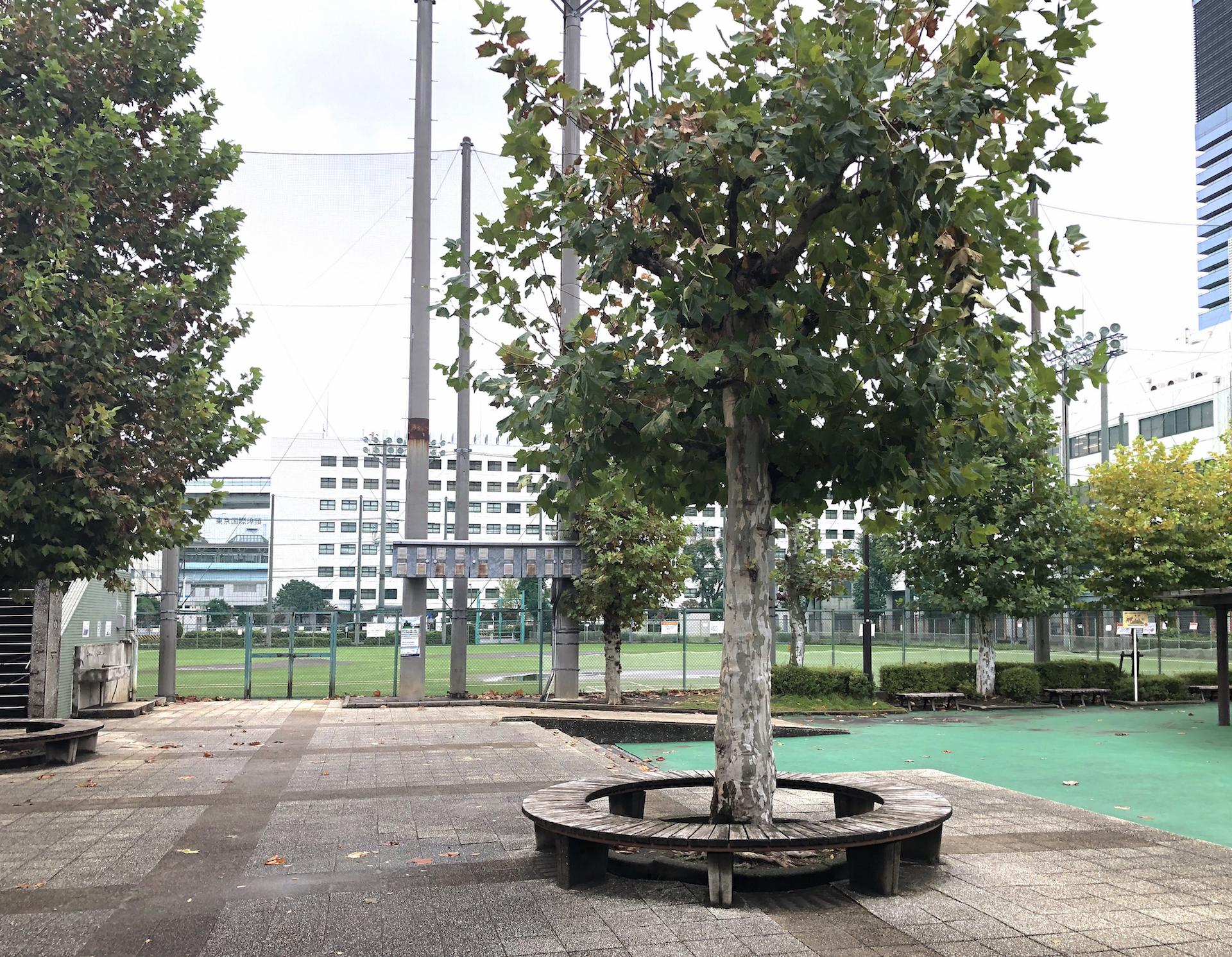 埠頭少年野球場(日本プロ野球発祥の地)