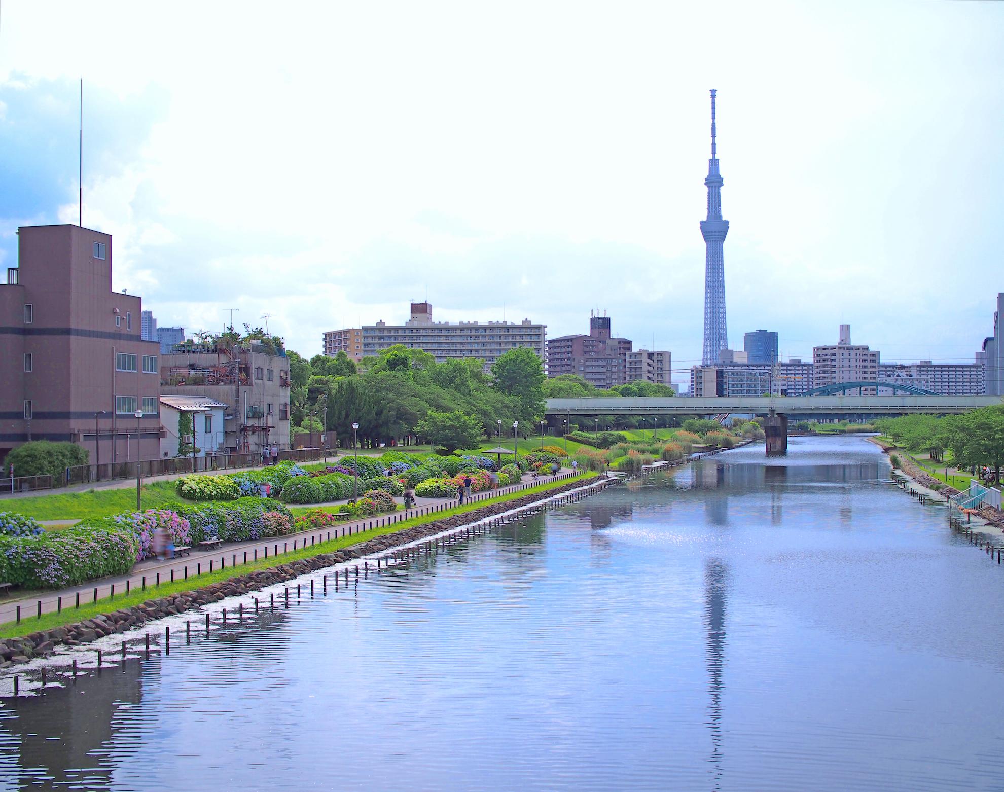 旧中川水辺公園