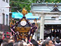 下谷神社大祭|台東区|2019